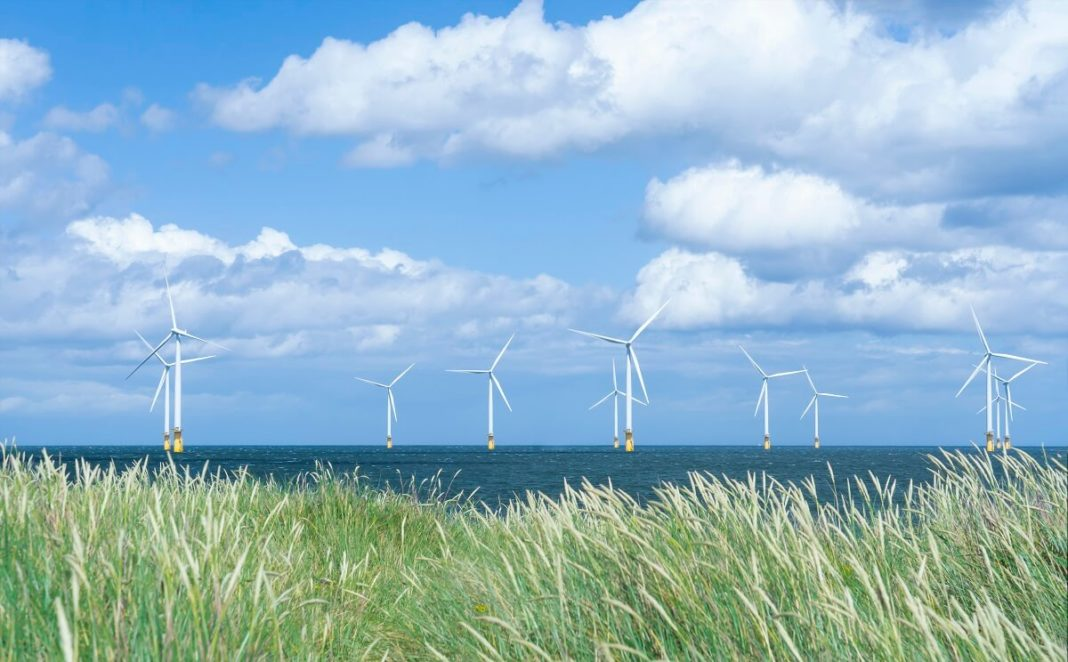 Windmill turbines generate wind energy