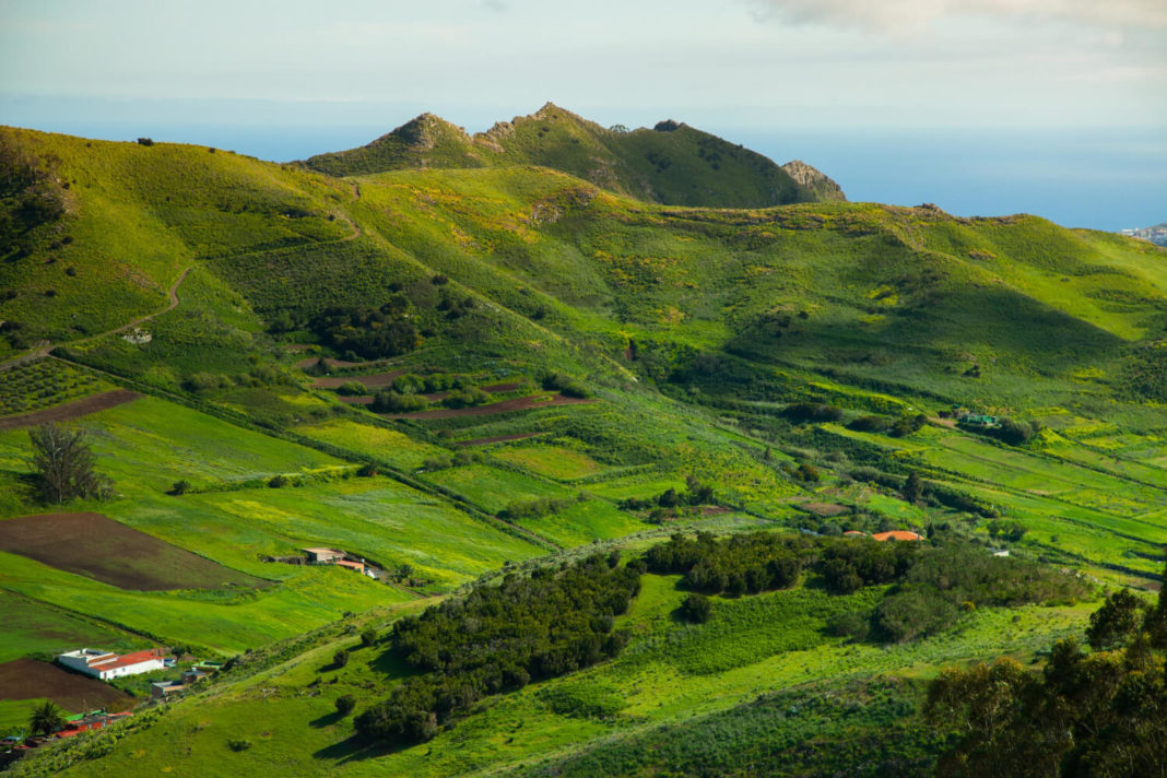 Canary Islands - which island is the greenest?